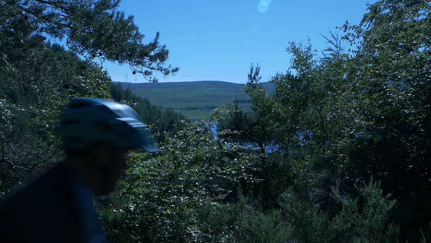 Blurry head of cyclist riding through dense greenery - trees and bushes - with glimpses of water of a loch between branches.
