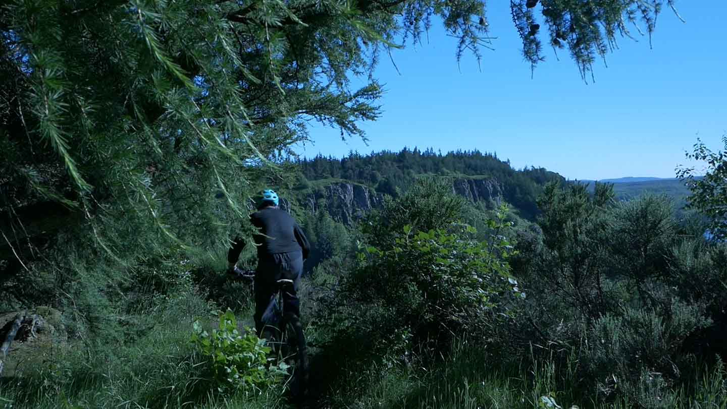 Looking out through drooping branches with deep dark green foilage at mountain biker with cliffs and blue sky in the background